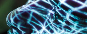 http://istoenormal.org/images/312.jpg