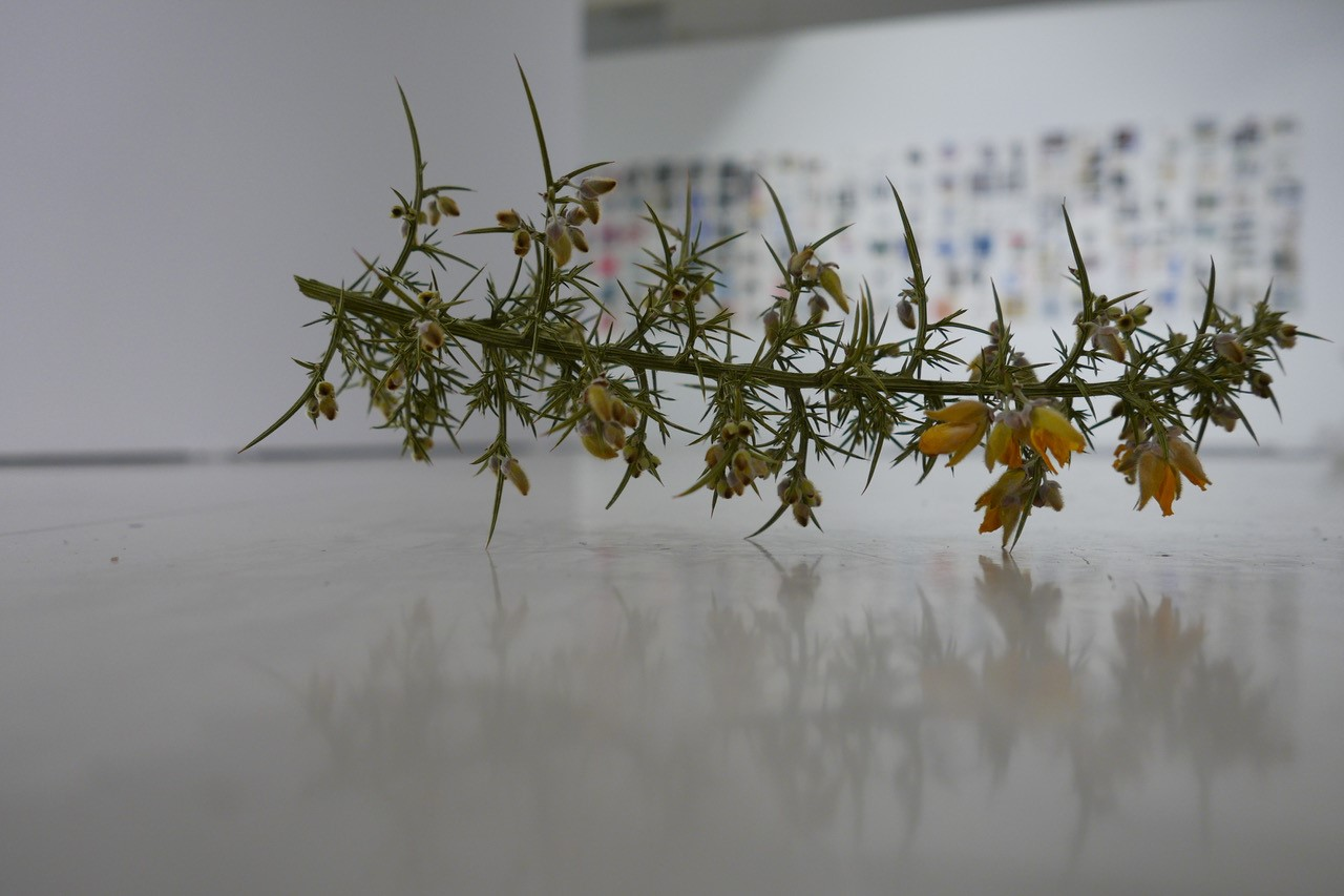 http://istoenormal.org/images/695.jpg